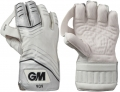 Gunn and Moore 909 Wicket Keeping Gloves