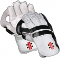 Gray Nicolls Oblivion e41 Wicket Keeping Gloves