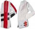 Gray Nicolls Predator 3 Limited Edition Wicket Keeping Gloves