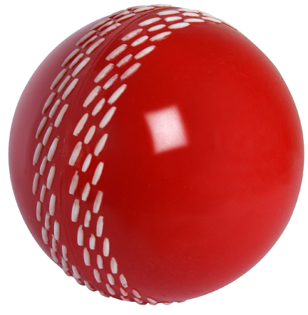 Gray Nicolls Velocity Ball
