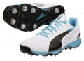 Puma Evospeed Cricket Spike