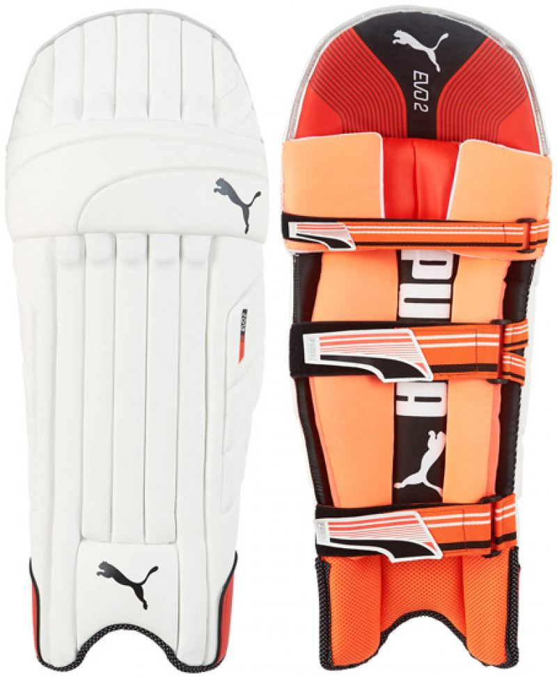 Puma Evo 2 Batting Pads