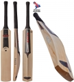 Salix Wasp Select Cricket Bat