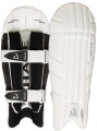 Chase R11 Wicket Keeping Pads