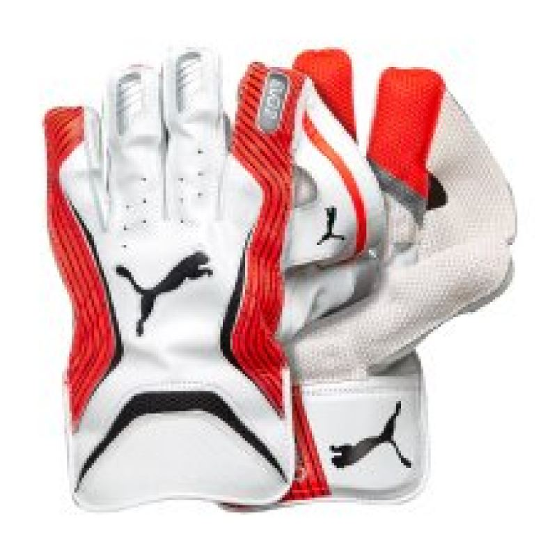 Puma evoPOWER 2 Wicket Keeping Gloves