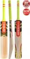 Gray Nicolls Powerbow 5 4 Star Cricket Bat