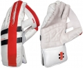 Gray Nicolls Predator 3 500 Wicket Keeping Gloves (Junior)
