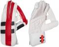Gray Nicolls Predator 3 1500 Wicket Keeping Gloves