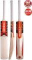 Gray Nicolls Predator 3 Halestorm Cricket Bat