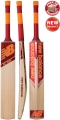 New Balance TC 560 Cricket Bat