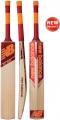 New Balance TC 560 Junior Cricket Bat