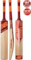 New Balance TC 660 Cricket Bat