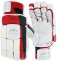 Newbery County Batting Gloves (Junior)