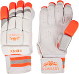Newbery Junior Batting Gloves