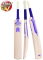 Newbery GT SPS Cricket Bat