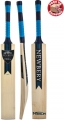 Newbery Merlin 5 Star+ Cricket Bat