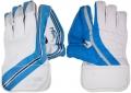 Newbery Merlin Wicket Keeping Gloves