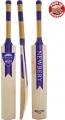 Newbery Sev7n T20 Cricket Bat