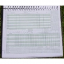 Scorebook 100 Innings