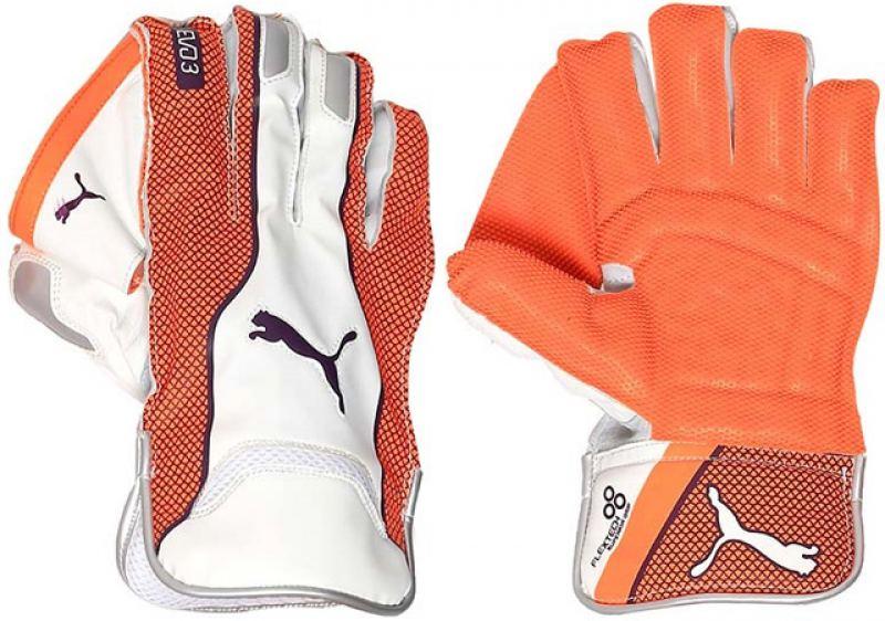 Puma Evo 3 Wicket Keeping Gloves