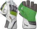 Puma evoPOWER 1 Wicket Keeping Gloves