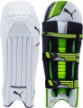 Puma evoPOWER 1 Batting Pads (Junior)