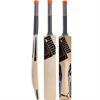 Puma EvoPOWER 1 SE Cricket Bat