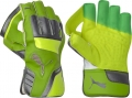 Puma evoPOWER 2 Wicket Keeping Gloves (Junior)
