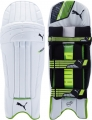 Puma evoPOWER 2 Batting Pads (Junior)