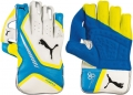 Puma evoPOWER 3 Wicket Keeping Gloves (Junior)