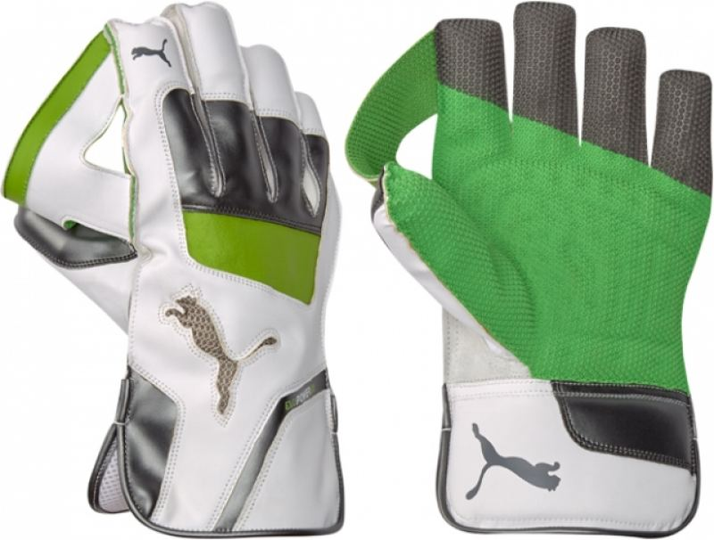 Puma evoPOWER 3 Wicket Keeping Gloves