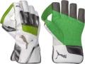 Puma evoPOWER 3 Wicket Keeping Gloves (Junior)