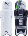 Puma evoPOWER FX Wicket Keeping Pads (Junior)