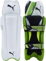 Puma evoPOWER FXT Wicket Keeping Legguards