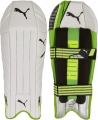 Puma evoPOWER Wicket Keeping Pads (Junior)