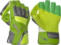 Puma evoPOWER Limited Edition Wicket Keeping Gloves
