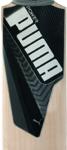 Puma EvoPOWER Special Edition Cricket Bat