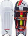 Puma evoSPEED 1 Batting Pads