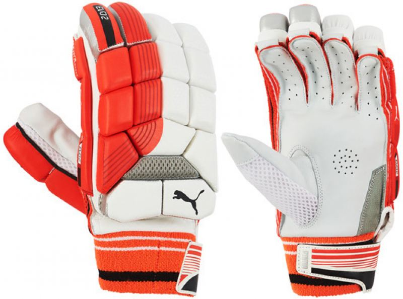 Puma Evo 2Y Batting Gloves (Junior)