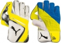Puma evoSPEED 2 Wicket Keeping Gloves (Junior)