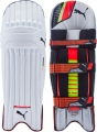 Puma evoSPEED 2 Batting Pads
