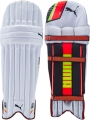 Puma evoSPEED 4 Batting Pads (Junior)