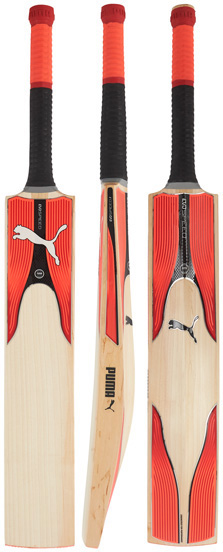 Puma EvoSpeed 3.17Y Junior Cricket Bat