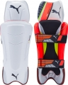 Puma evoSPEED FXT Wicket Keeping Pads (Junior)