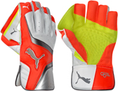 Puma Wicket Keeping Gloves