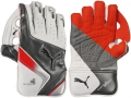 Puma Platinum 5000 Wicket Keeping Gloves