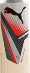 Puma Platinum Cricket Bats
