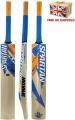 Spartan MC 4000 Cricket Bat